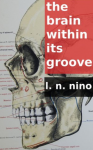 the brain within its groove review