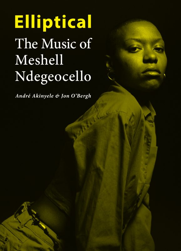 Elliptical: The Music of Meshell Ndegeocello
