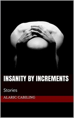 Insanity By Increments: Stories