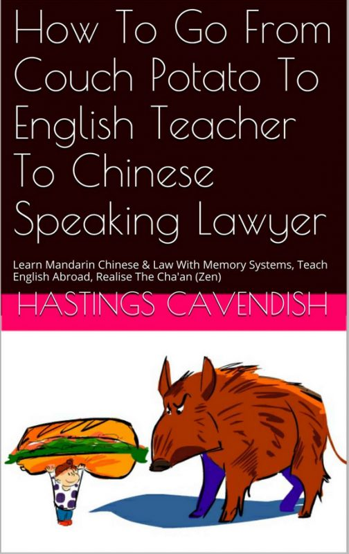 Review: How To Go From Couch Potato To Chinese Speaking Lawyer