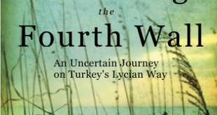 Breaking the Fourth Wall by Michelle Sevigny