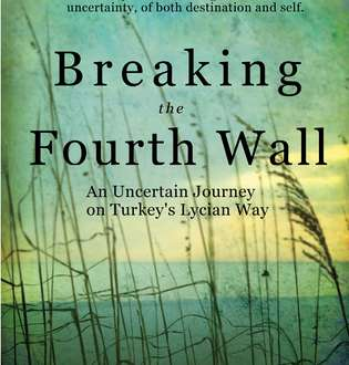 Review: Breaking the Fourth Wall by Michelle Sevigny